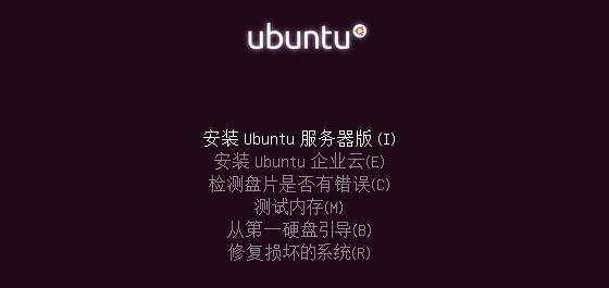 Ubuntu server 10.04
